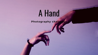 "featured image thumbnail for post ""A Hand"" - Photography Challenge"