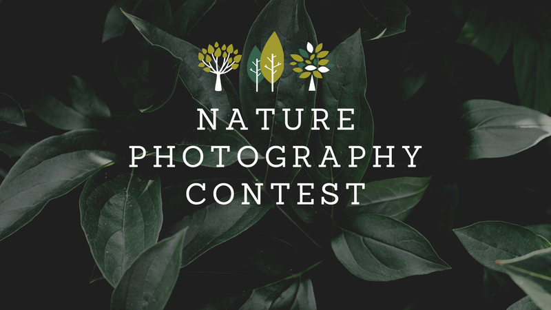 featured image thumbnail for post Nature Photography Contest