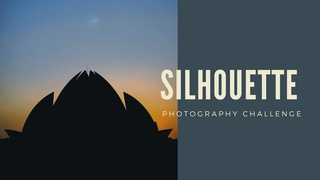 featured image thumbnail for post The 'Silhouette' photography challenge