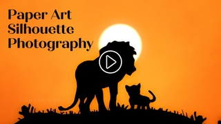 featured image thumbnail for post Paper Art Silhouette Photography Challenge