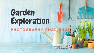 featured image thumbnail for post Garden Exploration Challenge