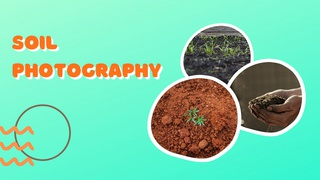featured image thumbnail for post Soil Photography Challenge