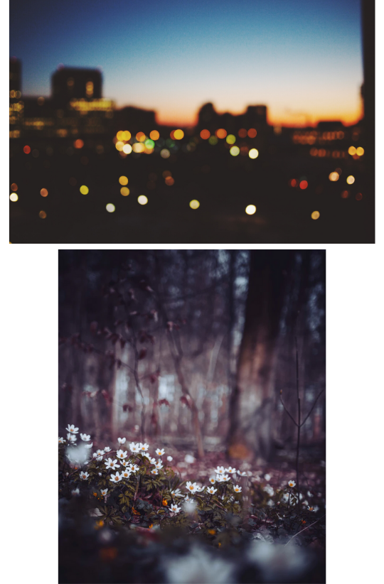 Sample Images for Bokeh Photography Challenge