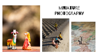 featured image thumbnail for post Miniature Photography Challenge