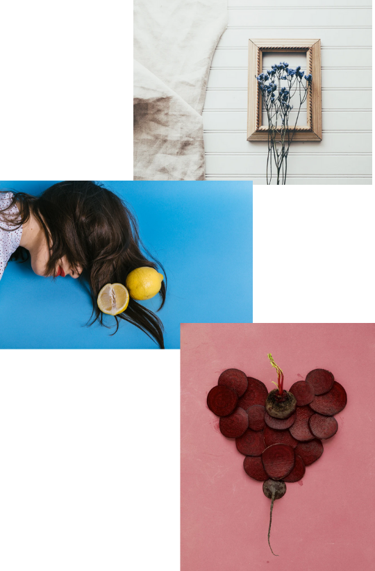 Sample Images for Conceptual Still-life Photography Challenge